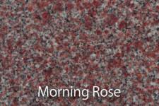 _0007_MorningRose